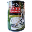 Bean sprouts, 400g